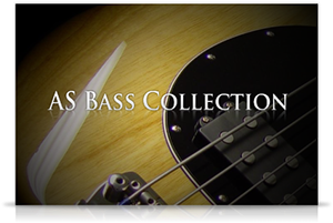 Acouticsamples AS Bass Collection